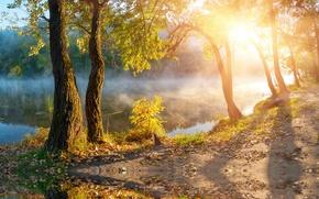 Картинка осень, солнце, деревья, туман, озеро