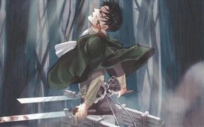 Картинка лес, туман, кровь, эмблема, парень, плащ, клинки, военная форма, Shingeki no Kyojin, привод, Вторжение Гигантов, …