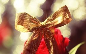 Картинка подарок, лента, бант