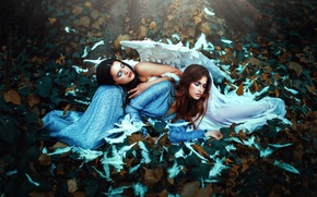 Картинка фон, девушки, крылья, перья, лежат