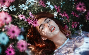 Картинка взгляд, девушка, цветы, лицо, губы, полевые