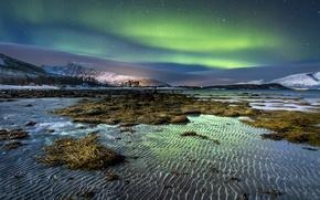 Картинка зима, песок, небо, вода, звезды, снег, водоросли, горы, ночь, берег, остров, северное сияние, рябь, Норвегия