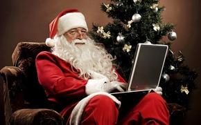 Картинка елка, праздник, Новый год, фото, рождество, Дед Мороз