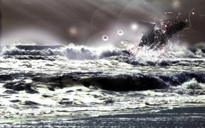 Обои животные, энергия, шторм, лучи, характер, природа, дельфин, свобода, брызги, море, круги