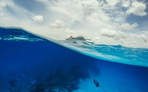 Картинка море, океан, корабль, рыба, лайнер