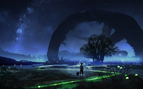Обои дерево, ночь, звезды, светлячки, небо, сон, мальчик