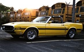 Картинка Shelby, Muscle car, 1969, кабриолет, форд, солнце, GT350, шелби, желтый, автобусы, ford, mustang, мустанг, забор, ...