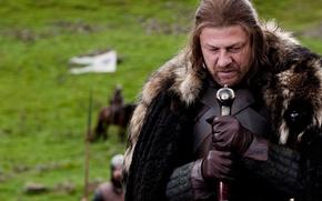 Обои мех, меч, игра престолов, знамя, доспехи, шон бин, Game of Thrones
