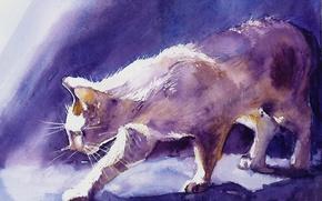 Картинка кошки, рисунок, гуашь
