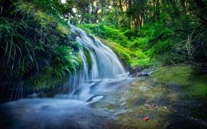 Картинка лес, листья, деревья, река, камни, водопад, обработка, поток, Thailand, таиланд, каскад