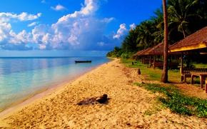 Картинка пляж, природа, пальмы, океан, курорт, экзотика