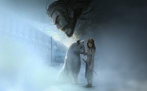 Картинка волк, старк, ария