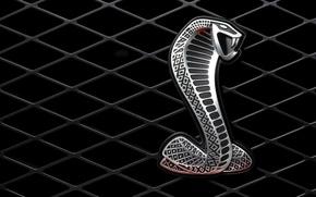 Картинка металл, змея, решетка