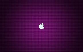 Картинка apple, текстура, бренд