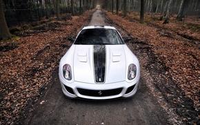 Картинка Ferrari, cars, white Ferrari