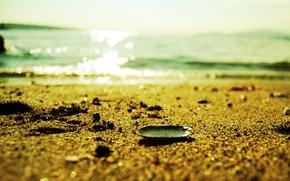 Картинка песок, море, пляж, лето, вода, макро, свет, блеск, раковина, ракушка, песчинки