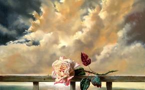 Картинка цветок, облака, свежесть, роза, живопись