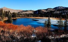 Обои горы, лед, река, лес, берега