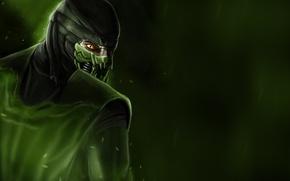 Картинка зеленый, ящер, Рептилия, слизь, mortal kombat, Reptile