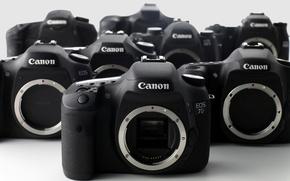 Картинка макро, фон, Canon Eos 7D