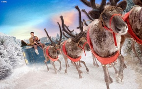 Картинка зима, небо, снег, улыбка, елки, рождество, костюм, актер, мужчина, упряжка, christmas, олени, пальто, Doctor Who, …