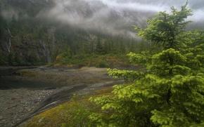 Картинка туман, река, Alaska