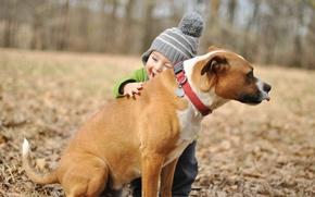 Обои радость, фон, друг, настроение, widescreen, обои, собака, мальчик, wallpaper, объятья, ребёнок, широкоформатные, dog, background, boy, ...