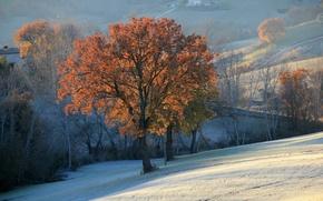 Картинка осень, снег, деревья, горы, холмы, поля, дымка