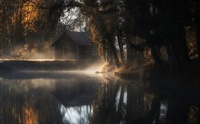 Картинка осень, туман, дом, пруд, утро