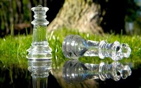 Картинка трава, стекло, вода, макро, природа, отражение, игра, шахматы, королева, macro, chess, король, стратегия, ход, обман, ...