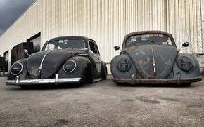 Картинка Volkswagen, black, grey, Beetle, ratlook