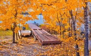 Картинка озеро, лодка, мостик, деревья, осень, листья