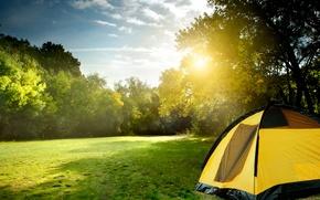 Картинка зелень, солнце, лучи, пейзаж, природа, палатка
