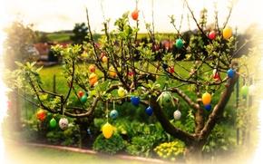 Картинка листья, ветки, яйца, Пасха, Easter