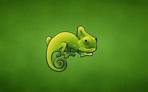 Картинка зеленый, хамелеон, ящер, chameleon