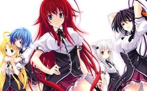 Картинка взгляд, улыбка, аниме, хвост, школьная форма, ушки, anime, toujou koneko, asia argento, himejima akeno, highschool …