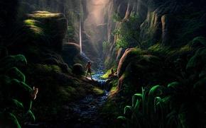 Картинка девушка, бабочки, мост, ручей, скалы, растения, арт, ущелье, парень, индейцы, Fel-X