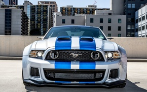Обои Shelby, Need For Speed, 2014, Mustang, From, Передок, Ford