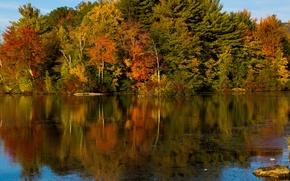Картинка осень, лес, небо, вода, деревья, озеро, река