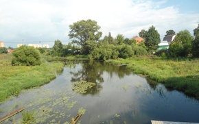 Картинка река, кувшинки, Местность