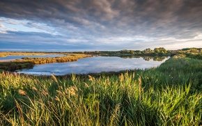 Картинка небо, трава, облака, пейзаж, природа, озеро, France, Petite Camargue