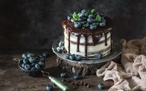 Обои голубика, шоколад, торт