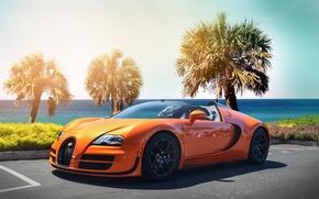 Картинка пляж, оранжевый, пальмы, veyron, bugatti, гиперкар