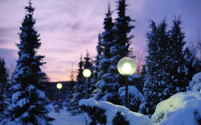 Картинка зима, свет, снег, природа, вечер, фонари