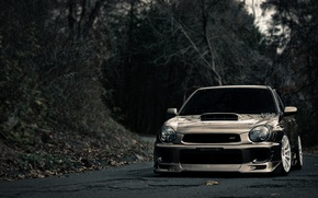 Картинка дорога, widescreen, дороги, subaru, леса, субару, фото машин, wrx тачки, красивые машины