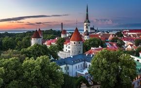 Картинка лето, город, дома, вечер, Эстония, Таллин, Август