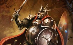 Картинка меч, воин, щит, art, Trine 2, Pontius, Понтий