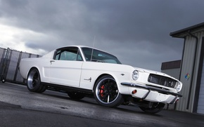 Картинка Mustang, Ford, 1965, Fastback, Wheels, RB3C, Forgeline