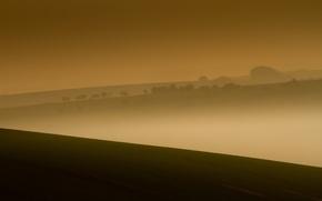 Картинка поле, ночь, туман