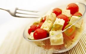 Обои сыр, помидоры, еда, вилка, тарелка, полезное лакомство